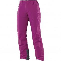 Salomon W Iceglory Pant, Aster Purple